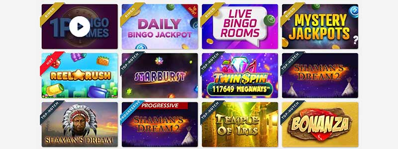 loony bingo games screenshot